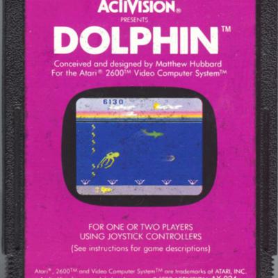 Dolphin .jpeg